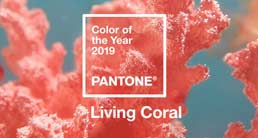 Color Of Year 2019